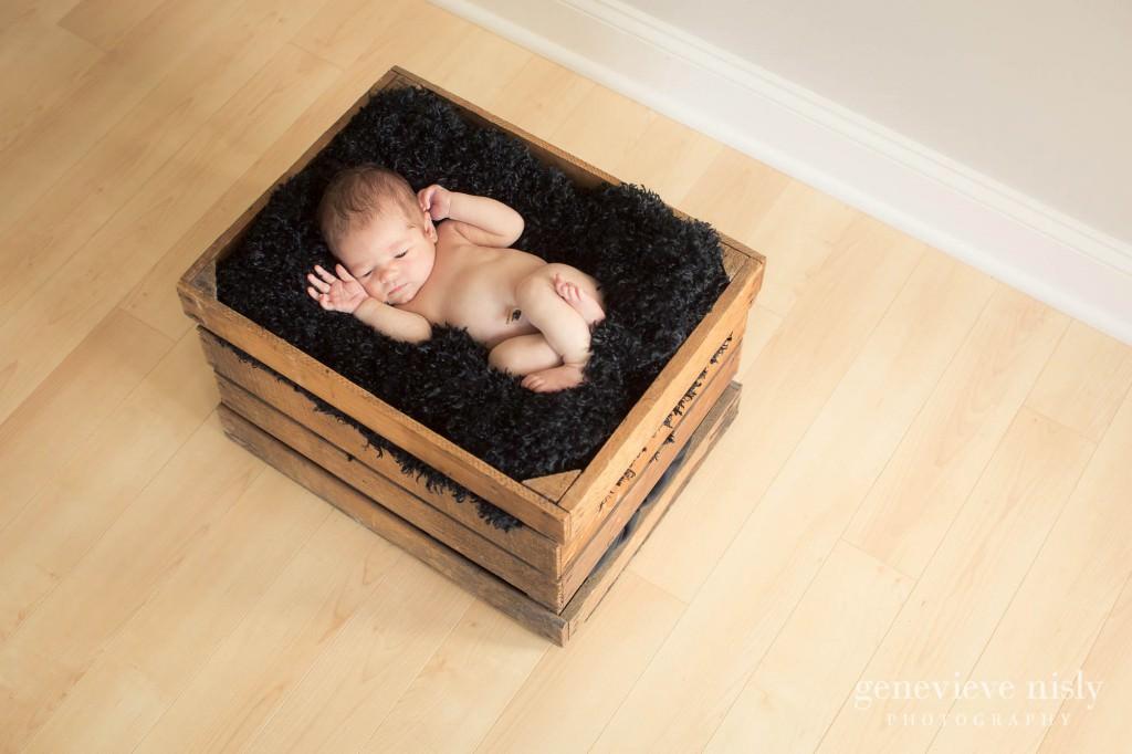 Copyright Genevieve Nisly Photography, Family, Newborn, Portraits, Studio