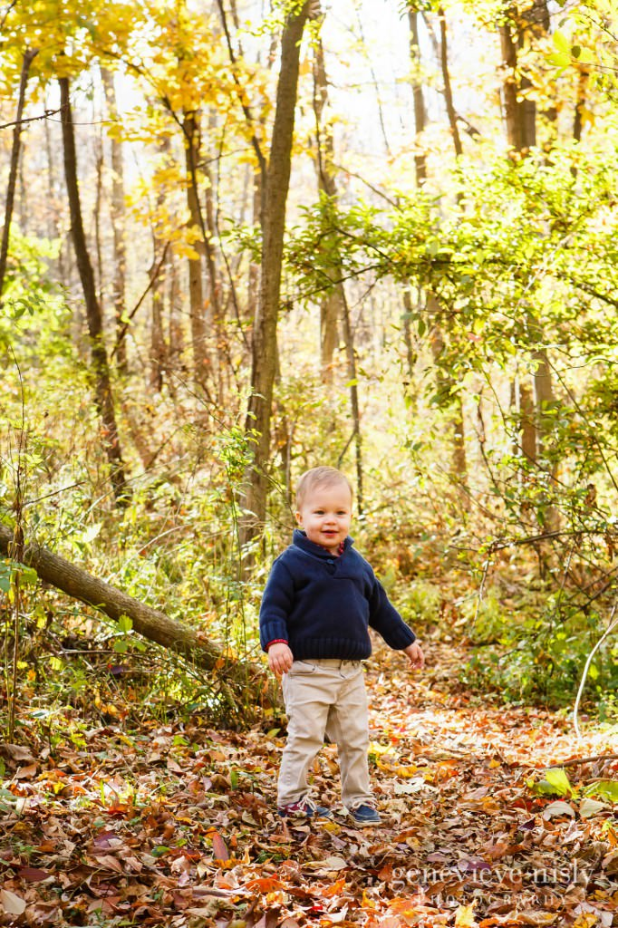 Boettler Park, Copyright Genevieve Nisly Photography, Fall
