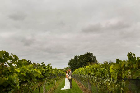 A bride in her short sleeved white wedding gown facing and holding her groom in his grey tuxedo standing in the green grassy row of a green vineyard at Gervasi in Canton, Ohio on a grey cloudy overcast day.