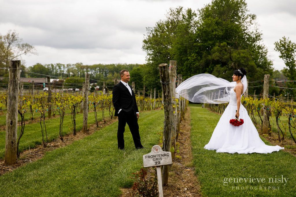 Robert and Alecia in the vines during the wedding at Gervasi Vineyard.