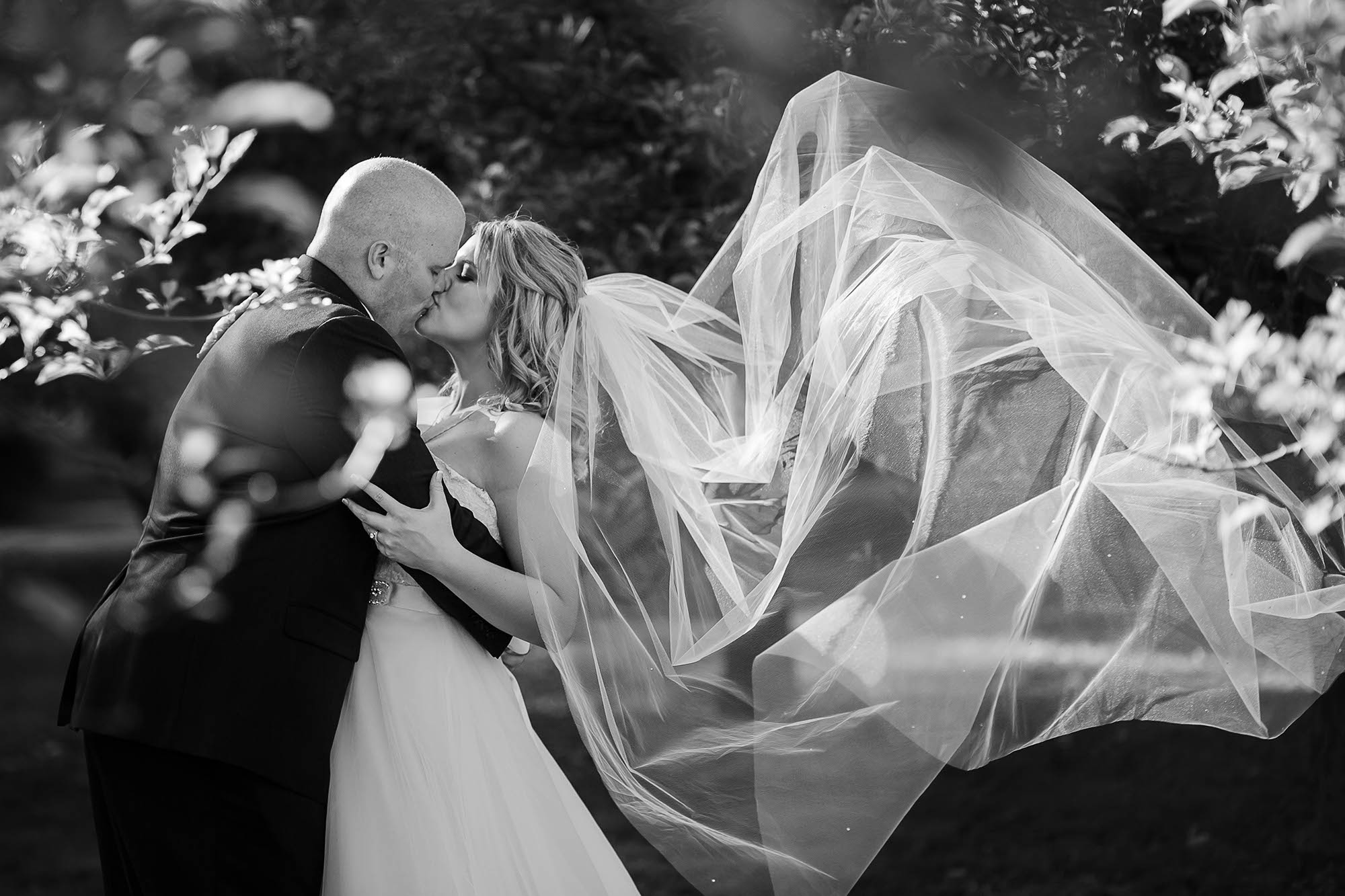 Copyright Genevieve Nisly Photography