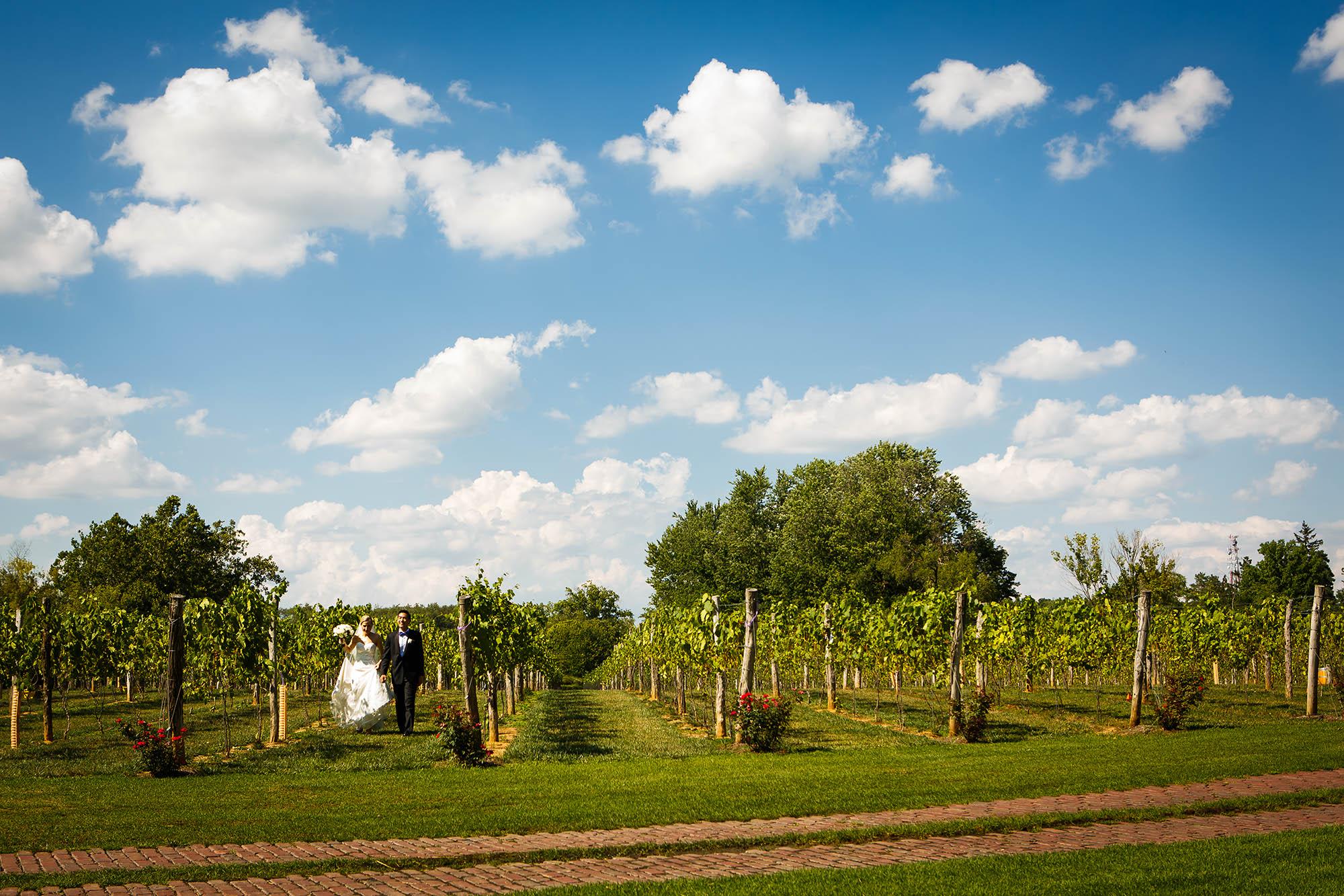 Canton, ceremony, ohio, Wedding, Gervasi Vineyard